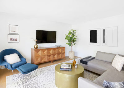 amy-elbaum-royal-wood-living-room-1